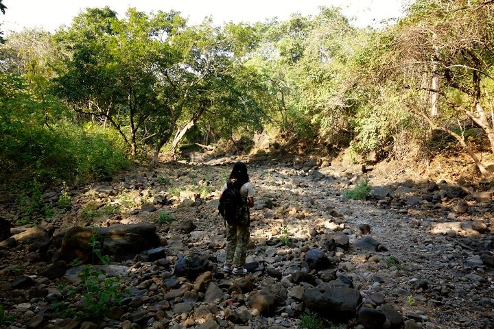 Borivali-National-Park-Mumbai-Mornings-Hike-Shilonda