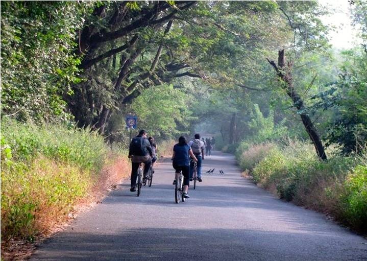 Mumbai-Mornings-Cycling-Borival--National-Park